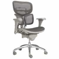 EuroLuxe Mesh Office Chair with Lumbar Support