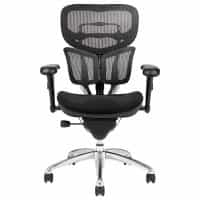 Ergonomic Black Mesh Back with Adjustable Arms, Seat Slider, Tilt Tension Adjustment