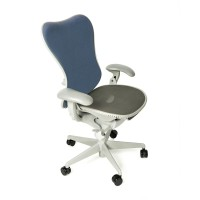 Herman Miller Mirra Fully Loaded with Posture Fit Support Blue/Grey