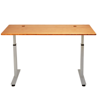 StandDesk - Leading Sit to Stand Motorized Desk